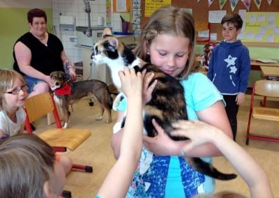 Katzenhund-0955